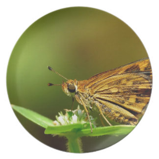 Butterfly Tamil Grass Dart with Bokeh Background Party Plates