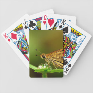Butterfly Tamil Grass Dart with Bokeh Background Poker Deck