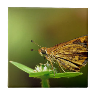 Butterfly Tamil Grass Dart with Bokeh Background Ceramic Tile