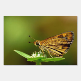 Butterfly Tamil Grass Dart with Bokeh Background Lawn Signs