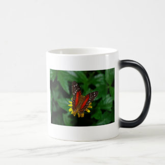 Butterfly Temperature Mug