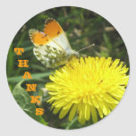 Butterfly Thanks Stickers