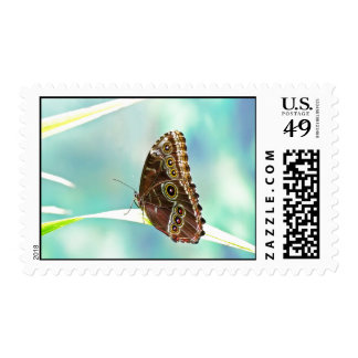 Butterfly Themed Stamps