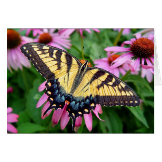 Butterfly Tiger Swallowtail Greeting Card