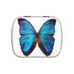Butterfly Tin Jelly Belly Tin