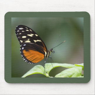 Butterfly Tongue Mouse Pad