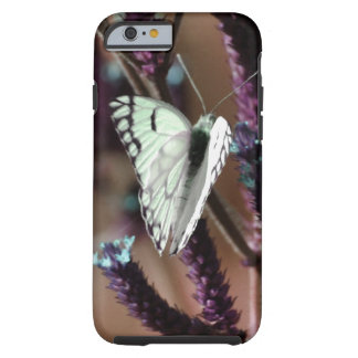 Butterfly touches all flowers tough iPhone 6 case