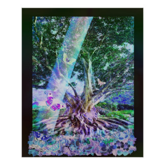 Butterfly Tree Poster