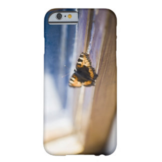 Butterfly trying to get out Sweden iPhone 6 Case