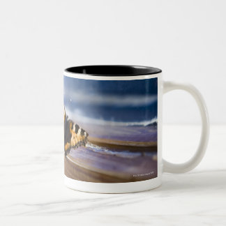 Butterfly trying to get out, Sweden. Two-Tone Coffee Mug