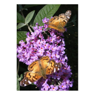 Butterfly Twins ~ ATC Large Business Cards (Pack Of 100)