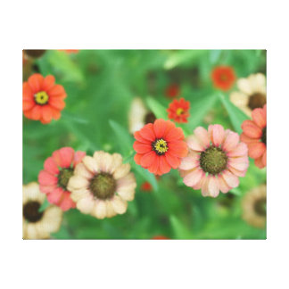 Butterfly View - Red Daisy Flowers Home Wall Art Canvas Print