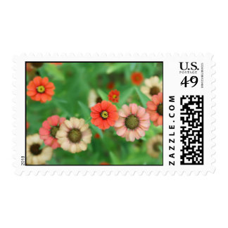 Butterfly View - Red Daisy Flowers Postage Stamp