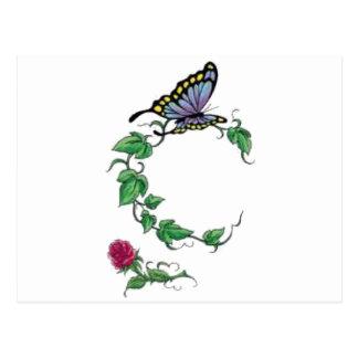 butterfly vine rose postcard