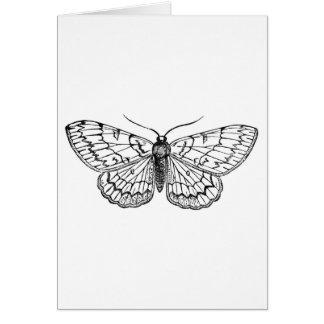 butterfly vintage illustration card
