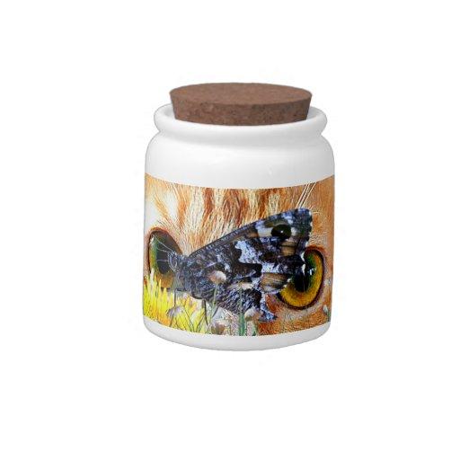 Butterfly Watcher Candy Jars
