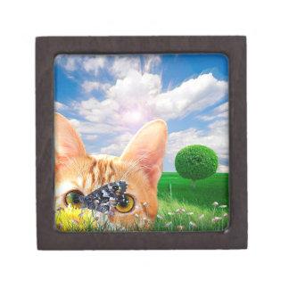Butterfly Watcher Gift Box