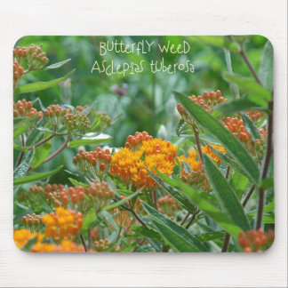 Butterfly Weed Mouse Pad