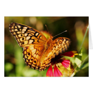 Butterfly & Wildflower Greeting Card