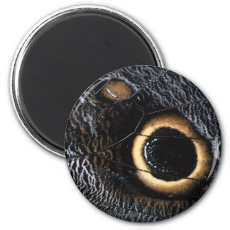 butterfly wing 2 inch round magnet