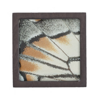 Butterfly Wing Gift Box