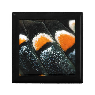 Butterfly Wing Scale Pattern Jewelry Box