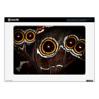Butterfly wing samsung chromebook decal