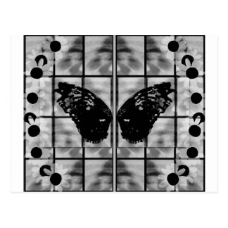 Butterfly wings daises black white postcard
