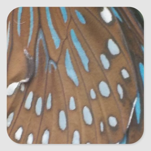 Butterfly Wings Square Sticker