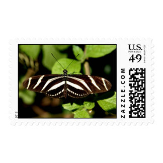 Butterfly with stripes postage