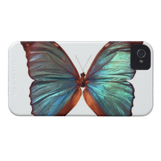 Butterfly with wings spread 2 iPhone 4 cases