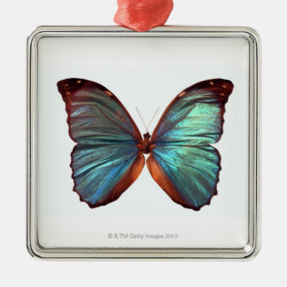 Butterfly with wings spread 2 metal ornament