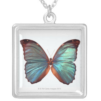 Butterfly with wings spread 2 silver plated necklace