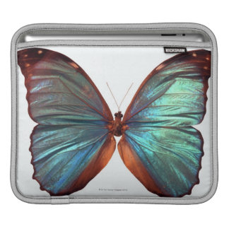 Butterfly with wings spread 2 sleeve for iPads