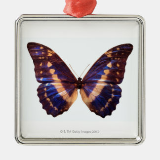 Butterfly with wings spread 3 metal ornament