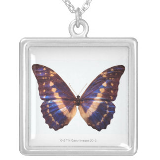 Butterfly with wings spread 3 silver plated necklace