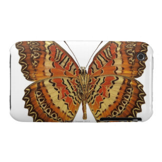 Butterfly with wings spread Case-Mate iPhone 3 case