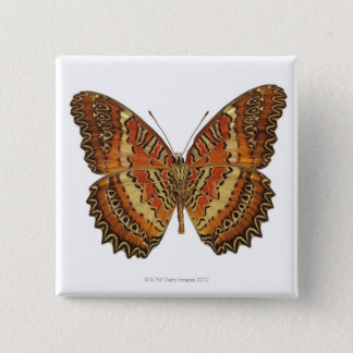 Butterfly with wings spread pinback button
