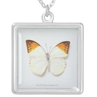 Butterfly with wingspread, found in regions of Asi Necklace
