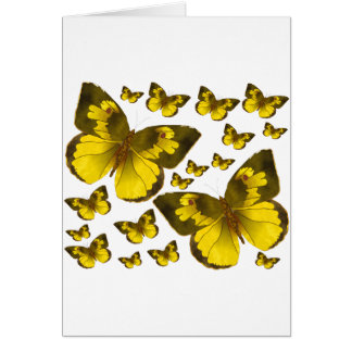 Butterfly Wonder Greeting Card