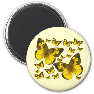 Butterfly Wonder Fridge Magnets