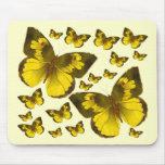 Butterfly Wonder Mousepad