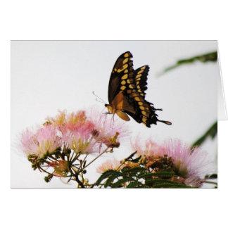 BUTTERFLY WONDERMENT CARD