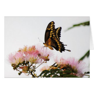 BUTTERFLY WONDERMENT GREETING CARD