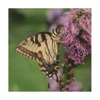 Butterfly, Wood Photo Print. Wood Wall Decor