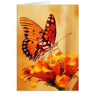 Butterfly & Zinnia Card