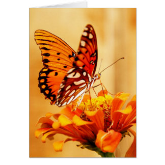 Butterfly & Zinnia Greeting Card