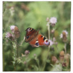 Butterflying Servilletas