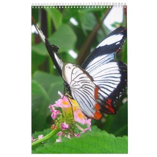 Butterfly's Calendar