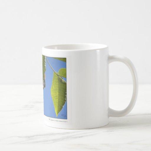 Butterfly's Shadow Basic White Mug